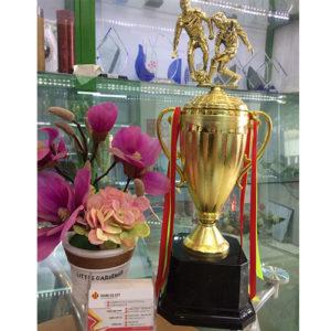 cúp vô địch