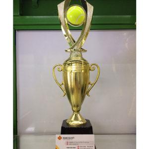 cúp vô địch hg002