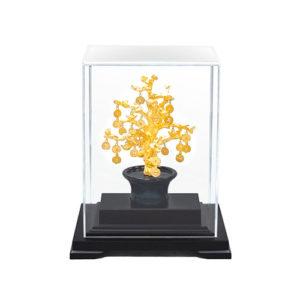 biểu trưng cây tiền