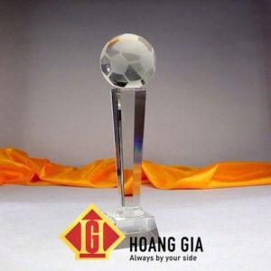 cup phale hg020