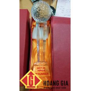 cup phale hg026