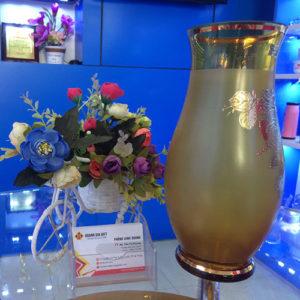 lo hoa phale hg015