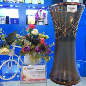 lo hoa phale hg017