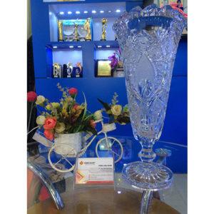 lo hoa phale hg019